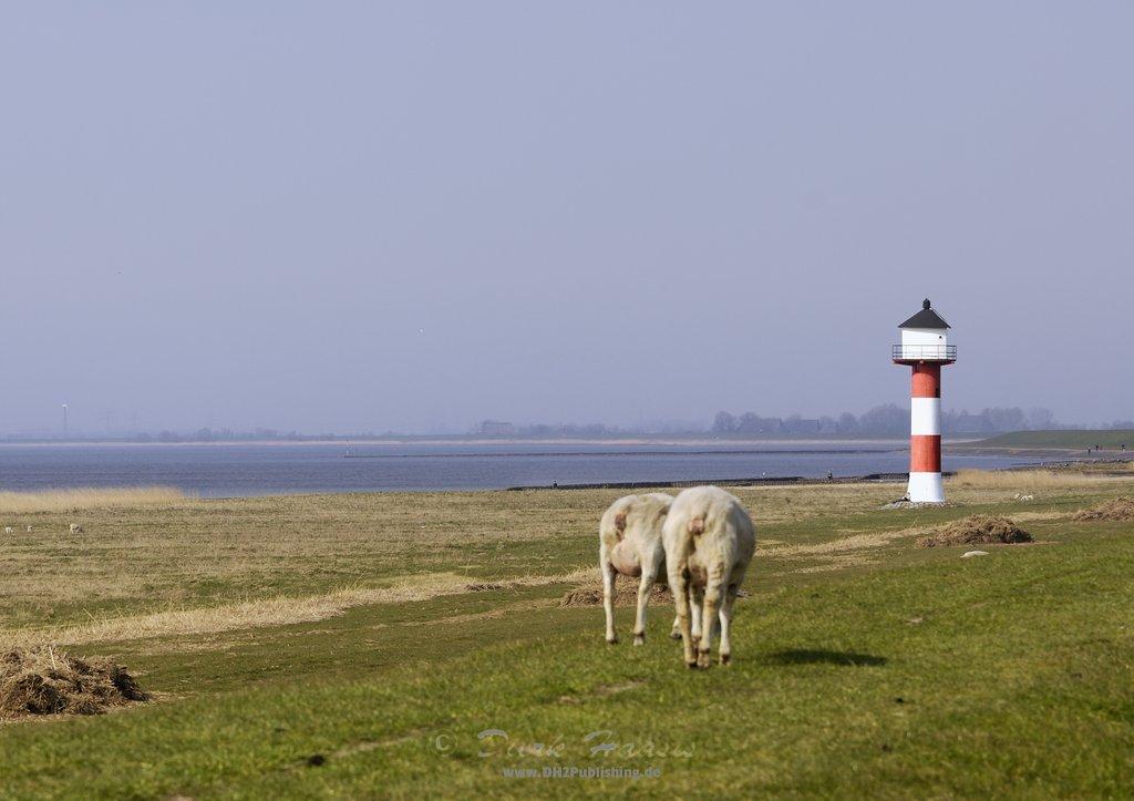 Leuchtturm in der Blomeschen Wildnis - zur Verfügung gestellt von Dierk Haasis