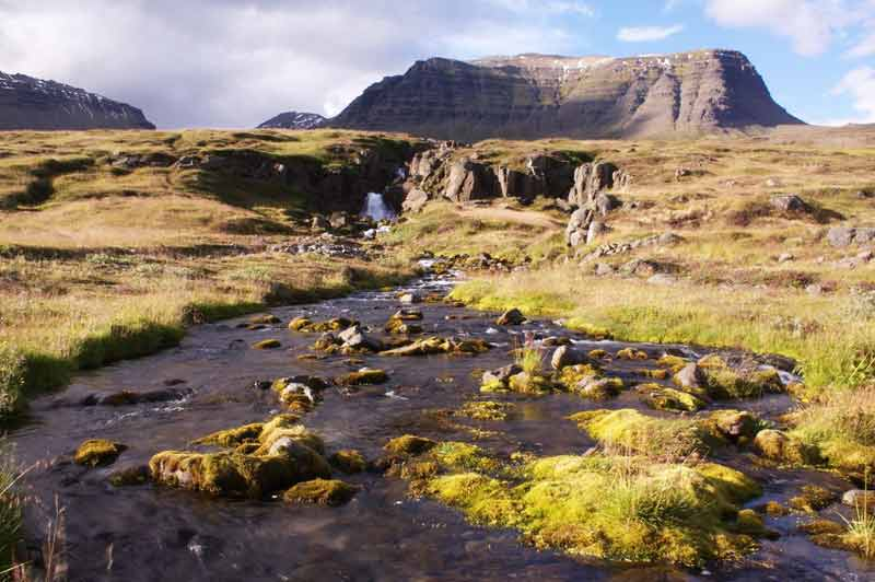 Landschaft in den isländischen Ostfjorden
