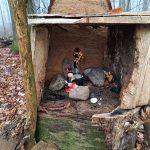 Altar und Kraftort: Der mystische Wald hinterm Haus