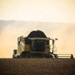 Sommerungen: Wenn der Ackerbauer fachsimpelt