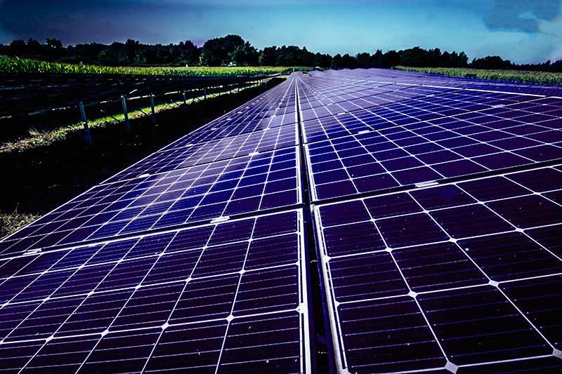 Ein Solarpark ist eine gute Alternative, um regenerative Energie zu erzeugen.