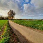 Promenadologie: Ich fröne der Wissenschaft vom Spaziergang