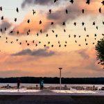 Travemünde: Nach Feierabend noch schnell ans Meer