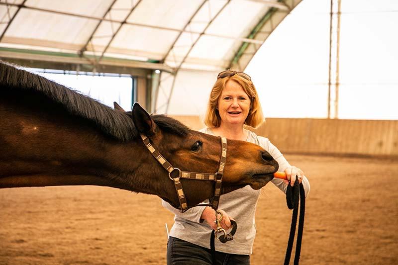 Eine Frau gibt einem Pferd eine Möhre zu fressen.